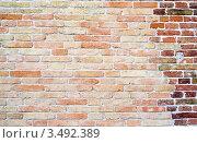 Купить «Кирпичная стена», фото № 3492389, снято 5 апреля 2010 г. (c) Степанов Григорий / Фотобанк Лори