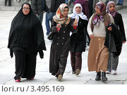 Купить «Группа молодых мусульманских женщин в мечети Султанахмет Стамбул», эксклюзивное фото № 3495169, снято 12 марта 2010 г. (c) Андрей Дегтярёв / Фотобанк Лори