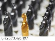 Купить «Золотое сверло для дрели среди обычных», фото № 3495197, снято 18 апреля 2012 г. (c) Дмитрий Калиновский / Фотобанк Лори