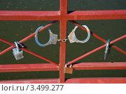 В брак без чувства юмора нельзя! Стоковое фото, фотограф Ольга Ларина / Фотобанк Лори
