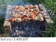 Купить «Приготовление шашлыка на кирпичах», фото № 3499697, снято 1 августа 2011 г. (c) FotograFF / Фотобанк Лори
