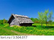 Домик в деревне (2012 год). Стоковое фото, фотограф Наталия Журова / Фотобанк Лори