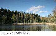 Лесное озеро. Стоковое видео, видеограф Андрей Леонидов / Фотобанк Лори