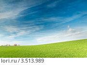 Склон зелёного холма под синим небом. Стоковое фото, фотограф Хромушин Тарас / Фотобанк Лори