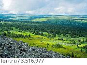 Купить «Тундра, Пермский край, Россия», фото № 3516977, снято 1 августа 2011 г. (c) Алексей Яговкин / Фотобанк Лори