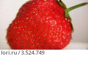 Купить «Клубника крупным планом», видеоролик № 3524749, снято 19 июня 2008 г. (c) Losevsky Pavel / Фотобанк Лори