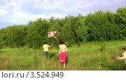 Купить «Родители с детьми запускают воздушный змей в летнем лесу», видеоролик № 3524949, снято 2 июля 2008 г. (c) Losevsky Pavel / Фотобанк Лори