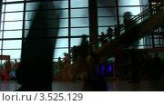 Купить «Силуэты людей на эскалаторе в аэропорту», видеоролик № 3525129, снято 31 августа 2008 г. (c) Losevsky Pavel / Фотобанк Лори