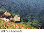 Каменный пляж Херсонеса. Стоковое фото, фотограф Кирилл Багрий / Фотобанк Лори