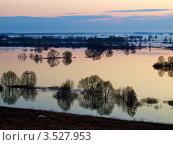 Весенний разлив на Оке (2012 год). Стоковое фото, фотограф Liseykina / Фотобанк Лори