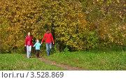 Купить «Родители с ребенком идут по тропинке в осеннем лесу», видеоролик № 3528869, снято 7 октября 2008 г. (c) Losevsky Pavel / Фотобанк Лори