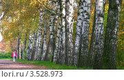 Купить «Женщина прогуливается по березовой роще», видеоролик № 3528973, снято 26 июля 2009 г. (c) Losevsky Pavel / Фотобанк Лори