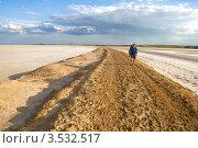 Купить «Путешественник», фото № 3532517, снято 4 мая 2011 г. (c) Надежда Болотина / Фотобанк Лори