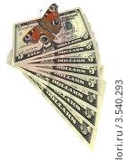 Купить «Бабочка и куча американских долларов, изолировано на белом фоне», фото № 3540293, снято 16 февраля 2019 г. (c) FMRU / Фотобанк Лори