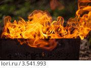 Огонь над мангалом. Стоковое фото, фотограф Юлия Гладышева / Фотобанк Лори