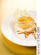 Купить «Аппетитный сливочный десерт», фото № 3542689, снято 17 апреля 2012 г. (c) CandyBox Images / Фотобанк Лори