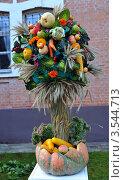 Букет из овощей (2011 год). Редакционное фото, фотограф Владимир ГОРОВЫХ / Фотобанк Лори