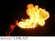 Поцелуй дракона. Фаершоу (2008 год). Редакционное фото, фотограф Татьяна Плешакова / Фотобанк Лори
