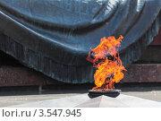 Купить «Могила Неизвестного Солдата», фото № 3547945, снято 17 мая 2012 г. (c) Игорь Долгов / Фотобанк Лори