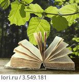 Купить «Открытая книга на фоне леса», фото № 3549181, снято 2 марта 2011 г. (c) Инга Дудкина / Фотобанк Лори