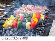 Купить «Шашлык из мяса и овощей на углях», фото № 3549409, снято 26 мая 2012 г. (c) Михаил Никитин / Фотобанк Лори