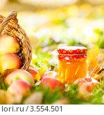 Корзина с яблоками и банка с вареньем на траве. Стоковое фото, фотограф yarruta / Фотобанк Лори