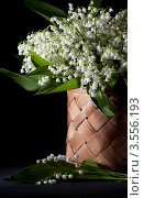 Купить «Букет ландышей в плетеной корзинке», фото № 3556193, снято 30 мая 2012 г. (c) Ольга Денисова / Фотобанк Лори
