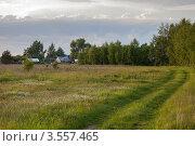 Купить «Сельская дорога, уходящая вдаль», фото № 3557465, снято 29 мая 2012 г. (c) Ольга Денисова / Фотобанк Лори