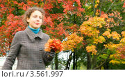 Купить «Женщина идет по осеннему парку с листьями в руках», видеоролик № 3561997, снято 24 декабря 2009 г. (c) Losevsky Pavel / Фотобанк Лори