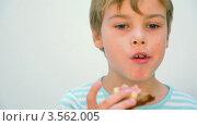 Купить «Мальчик ест бутерброд», видеоролик № 3562005, снято 22 декабря 2009 г. (c) Losevsky Pavel / Фотобанк Лори