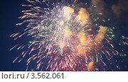 Купить «Праздничный салют в ночном небе», видеоролик № 3562061, снято 8 декабря 2009 г. (c) Losevsky Pavel / Фотобанк Лори
