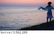Купить «Молодая женщина бежит по пляжу на фоне моря и вечернего неба», видеоролик № 3562289, снято 3 января 2010 г. (c) Losevsky Pavel / Фотобанк Лори