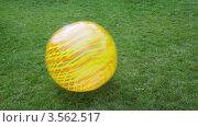 Купить «Большой полосатый мяч катится по траве», видеоролик № 3562517, снято 10 ноября 2009 г. (c) Losevsky Pavel / Фотобанк Лори