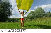 Купить «Радостная женщина держит развевающееся желтое полотно  в парке», видеоролик № 3563977, снято 3 февраля 2010 г. (c) Losevsky Pavel / Фотобанк Лори