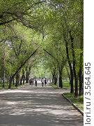 Купить «Амурский бульвар (Хабаровск)», фото № 3564645, снято 21 мая 2012 г. (c) Дмитрий Фиронов / Фотобанк Лори