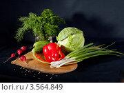 Купить «Натюрморт из овощей на черном фоне», фото № 3564849, снято 2 июня 2012 г. (c) Ольга Денисова / Фотобанк Лори