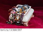 Купить «Шкатулка с драгоценностями», фото № 3568597, снято 12 мая 2012 г. (c) Инга Дудкина / Фотобанк Лори