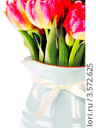 Купить «Букет тюльпанов крупно», фото № 3572625, снято 3 апреля 2012 г. (c) Наталия Кленова / Фотобанк Лори