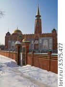 Купить «Самарская соборная мечеть», фото № 3575477, снято 10 марта 2012 г. (c) Акиньшин Владимир / Фотобанк Лори