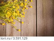 Купить «Лютики на деревянном фоне», фото № 3591129, снято 26 мая 2012 г. (c) Майя Крученкова / Фотобанк Лори
