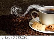 Купить «Ароматный черный кофе с корицей», фото № 3595293, снято 25 апреля 2012 г. (c) Sergey Nivens / Фотобанк Лори