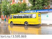 Купить «Посадка пассажиров в маршрутное такси № 538 Лыткарино - Кузьминки», фото № 3595869, снято 12 июня 2012 г. (c) Владимир Сергеев / Фотобанк Лори