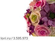 Искусственные цветы на белом фоне. Стоковое фото, фотограф Фотиев Михаил / Фотобанк Лори