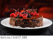Купить «Шоколадный торт со свежими ягодами на тарелке», фото № 3617189, снято 20 июня 2012 г. (c) Alexander Tihonovs / Фотобанк Лори