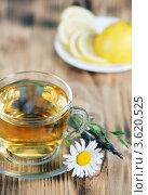 Купить «Травяной чай и лимон», фото № 3620525, снято 19 июня 2012 г. (c) Darkbird77 / Фотобанк Лори