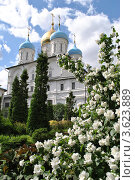 Купить «Новоспасский монастырь. Москва», эксклюзивное фото № 3623889, снято 18 июня 2012 г. (c) lana1501 / Фотобанк Лори