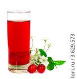 Купить «Вишневый сок с ягодами и цветами», фото № 3629573, снято 19 мая 2012 г. (c) Любовь Михайлова / Фотобанк Лори
