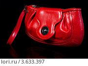 Стильная красная сумочка. Стоковое фото, фотограф OksanaOkss / Фотобанк Лори