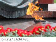 Купить «Вечный огонь», фото № 3634485, снято 8 мая 2011 г. (c) Losevsky Pavel / Фотобанк Лори