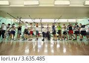 Купить «Соревнования по стрельбе из лука», фото № 3635485, снято 2 апреля 2011 г. (c) Losevsky Pavel / Фотобанк Лори